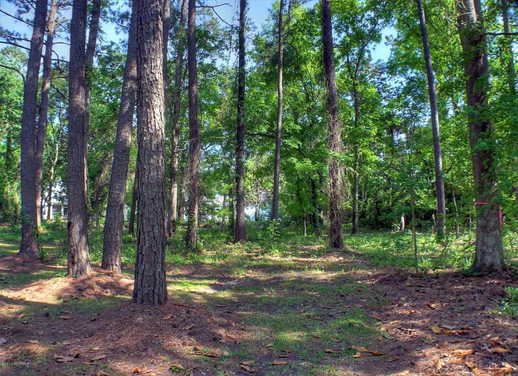 234 Mary Gray Farm Road, Beaufort, NC 28516 (MLS #100012955) :: Century 21 Sweyer & Associates