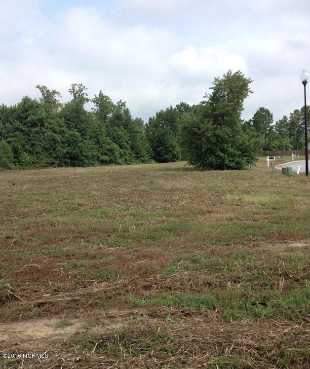 901 Edna Fields Drive, Leland, NC 28451 (MLS #100013995) :: Century 21 Sweyer & Associates