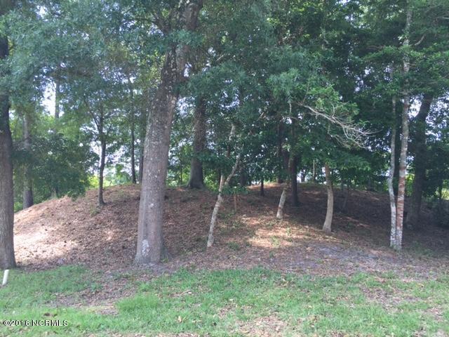 302 Bell Cove Court, Emerald Isle, NC 28594 (MLS #100015442) :: Century 21 Sweyer & Associates
