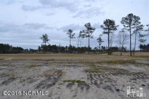 1353 Cross Water Circle, Leland, NC 28451 (MLS #100016583) :: Century 21 Sweyer & Associates