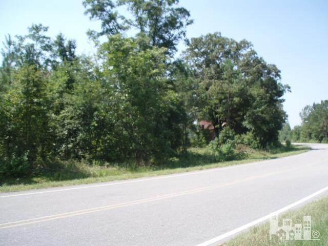 1101 Braxton Edge Road, Garland, NC 28441 (MLS #100018594) :: Century 21 Sweyer & Associates