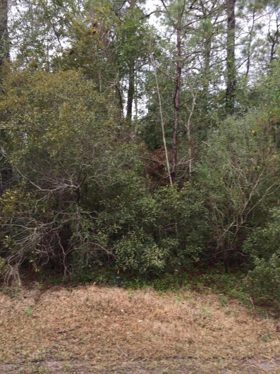 1616 Driftwood Drive SW, Ocean Isle Beach, NC 28469 (MLS #100020329) :: Century 21 Sweyer & Associates