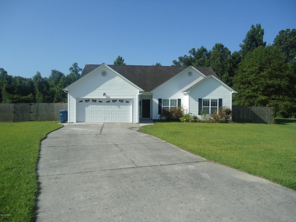 145 Spring Leaf Lane, Jacksonville, NC 28540 (MLS #100021088) :: Century 21 Sweyer & Associates