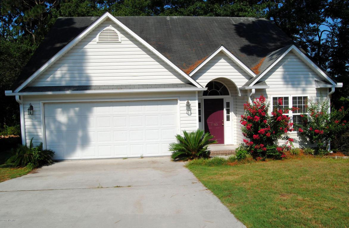 1503 Amhearst Court, Wilmington, NC 28412 (MLS #100022559) :: Century 21 Sweyer & Associates