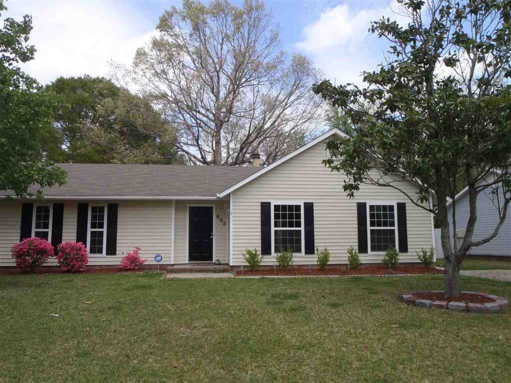 803 Deblea Court, Jacksonville, NC 28546 (MLS #100023439) :: Century 21 Sweyer & Associates