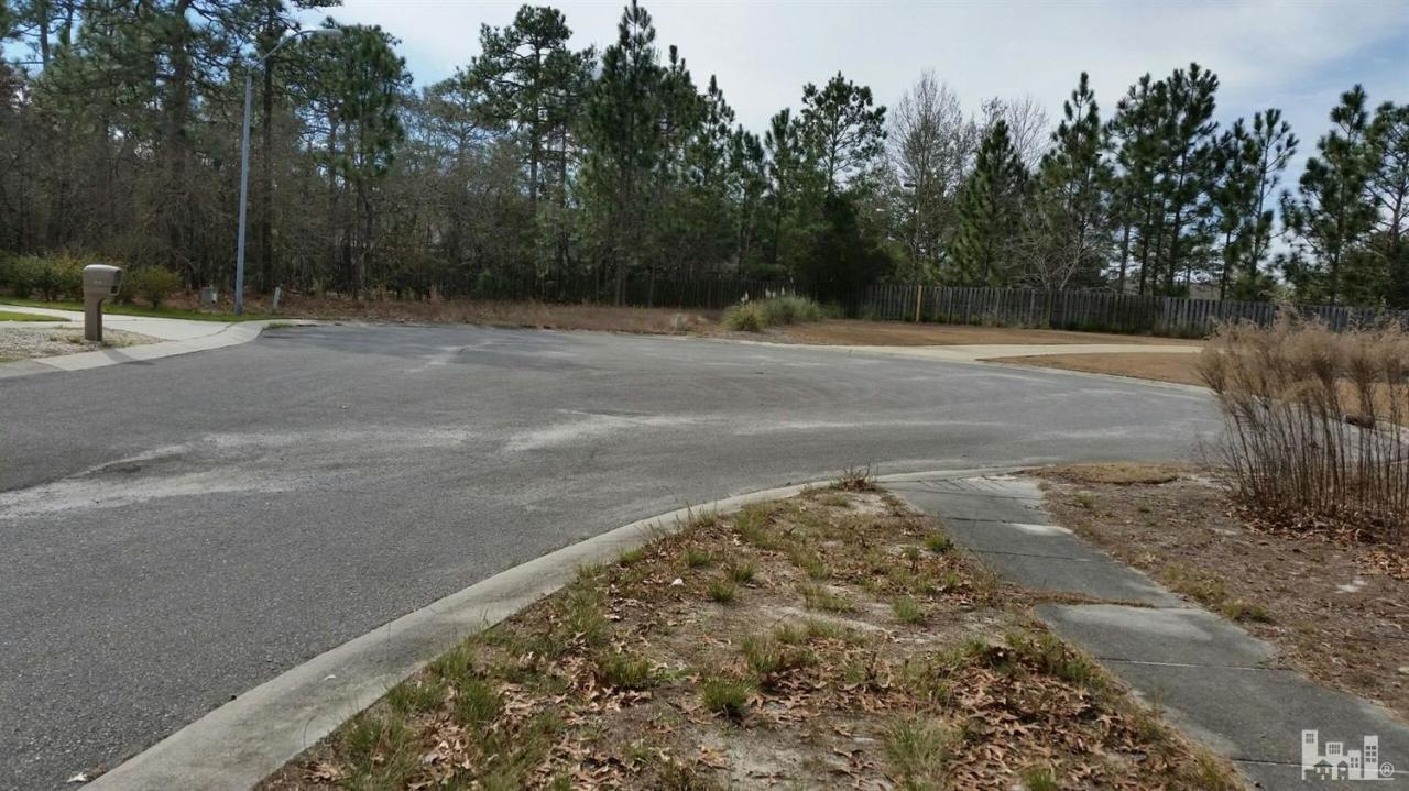 2014 Lynnwood Drive, Wilmington, NC 28403 (MLS #100023567) :: Century 21 Sweyer & Associates