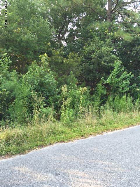 5913 Wishing Well Lane, Wilmington, NC 28409 (MLS #100023639) :: Century 21 Sweyer & Associates