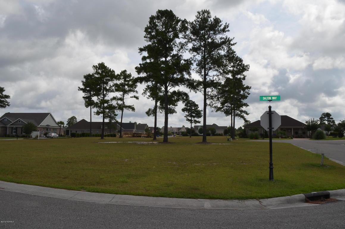 1302 Wingfield Court, Leland, NC 28451 (MLS #100024404) :: Century 21 Sweyer & Associates