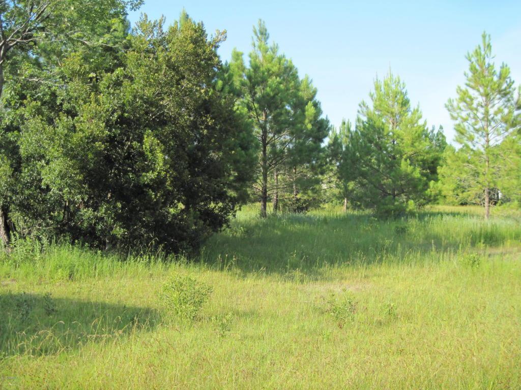 310 Otter Pond Trail, Holly Ridge, NC 28445 (MLS #100025104) :: Century 21 Sweyer & Associates