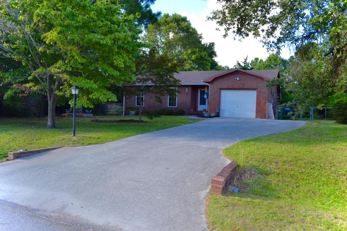 441 Day Lilly Drive, Wilmington, NC 28405 (MLS #100026070) :: Century 21 Sweyer & Associates
