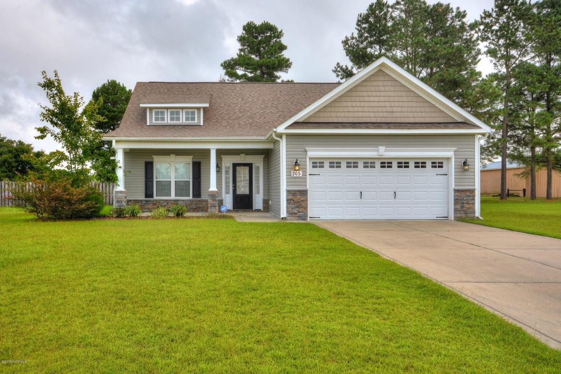 205 Maidstone Drive, Richlands, NC 28574 (MLS #100028130) :: Century 21 Sweyer & Associates