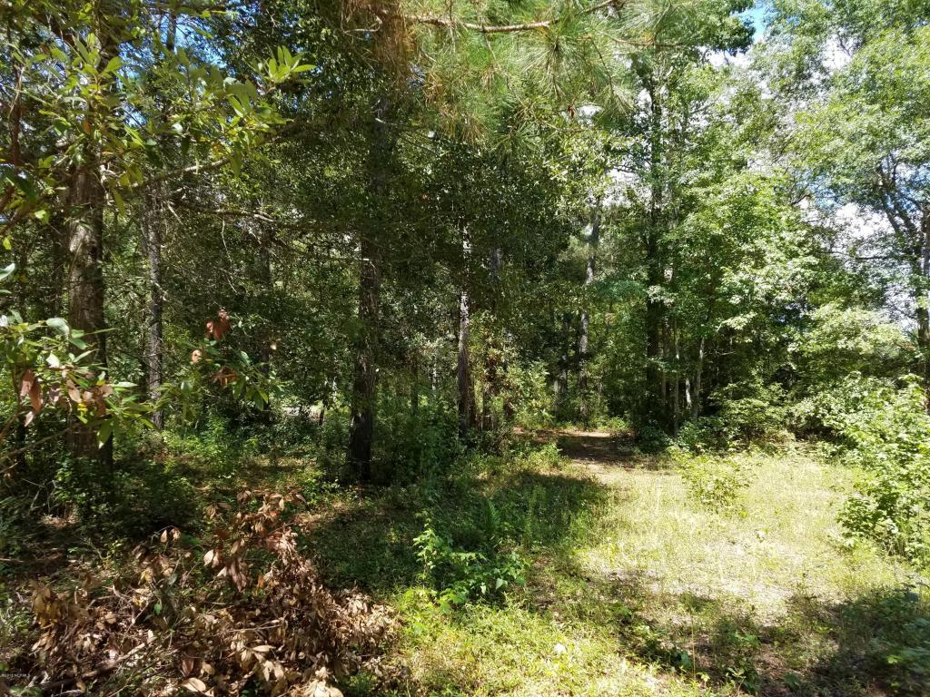 672 Stone Ridge Road SW, Supply, NC 28462 (MLS #100028422) :: Century 21 Sweyer & Associates