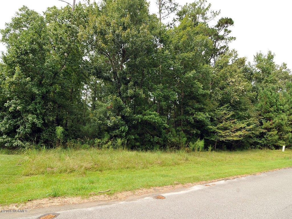 134 Lands End Court, Hampstead, NC 28443 (MLS #100030210) :: Century 21 Sweyer & Associates