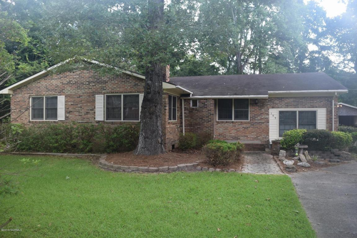 103 Riverside Drive, Havelock, NC 28532 (MLS #100030226) :: Century 21 Sweyer & Associates