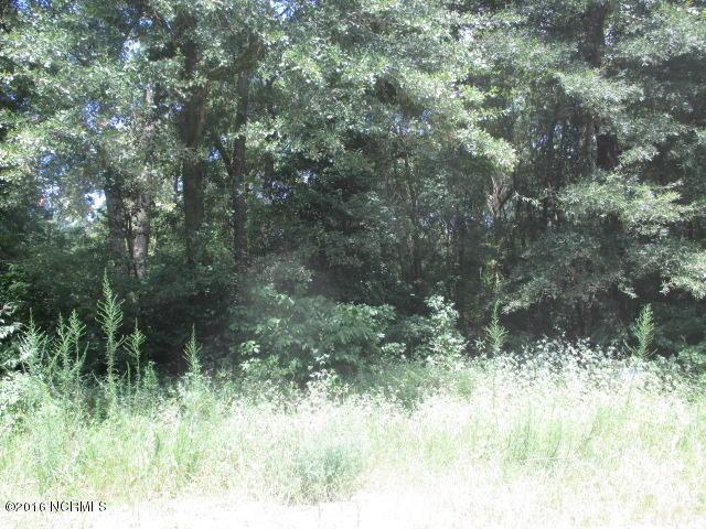 424 Corey Trail, Snow Hill, NC 28580 (MLS #100030266) :: Century 21 Sweyer & Associates