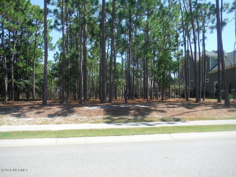 2735 Park Ridge Drive, Southport, NC 28461 (MLS #100030444) :: Century 21 Sweyer & Associates