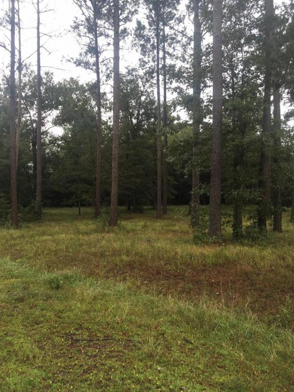 Lot 3 Sweetbrier Drive, Burgaw, NC 28425 (MLS #100030845) :: Century 21 Sweyer & Associates