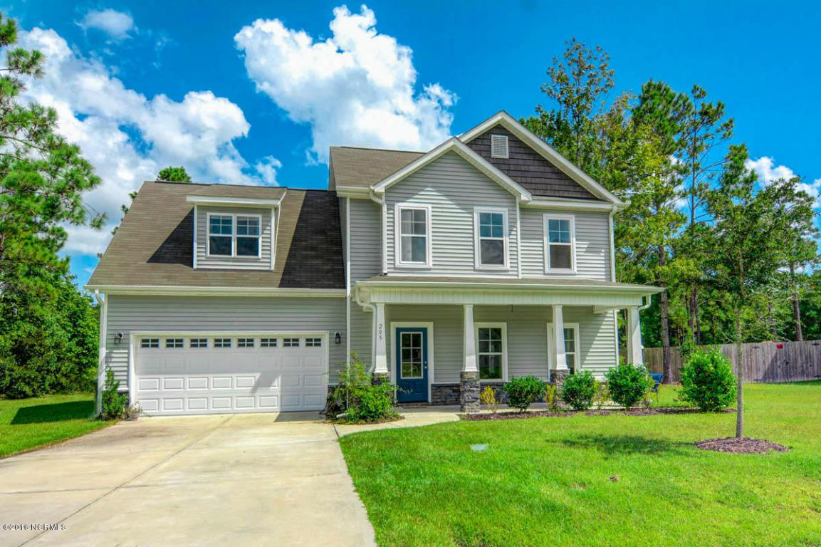 205 Wintergreen Lane, Hubert, NC 28539 (MLS #100031210) :: Century 21 Sweyer & Associates