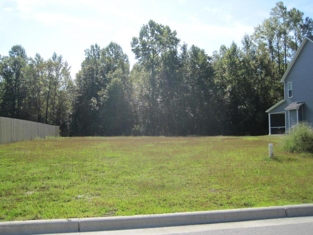 807 Oleander Street, Jacksonville, NC 28540 (MLS #100031468) :: Century 21 Sweyer & Associates
