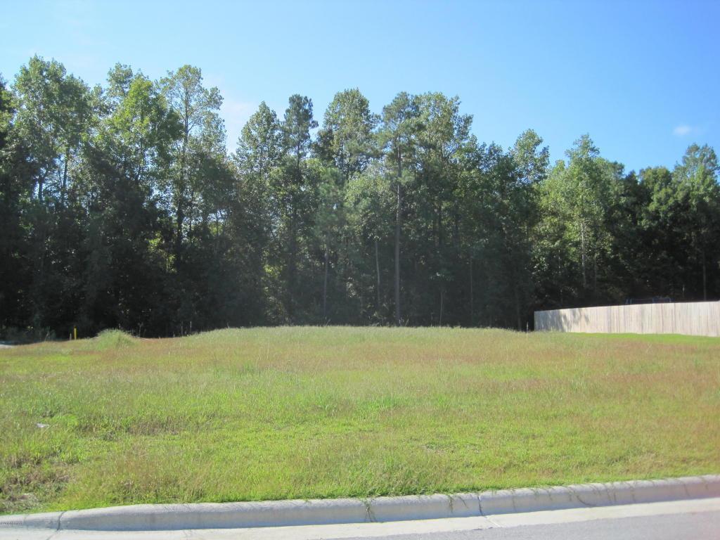 201 Pennington Street, Jacksonville, NC 28540 (MLS #100031469) :: Century 21 Sweyer & Associates