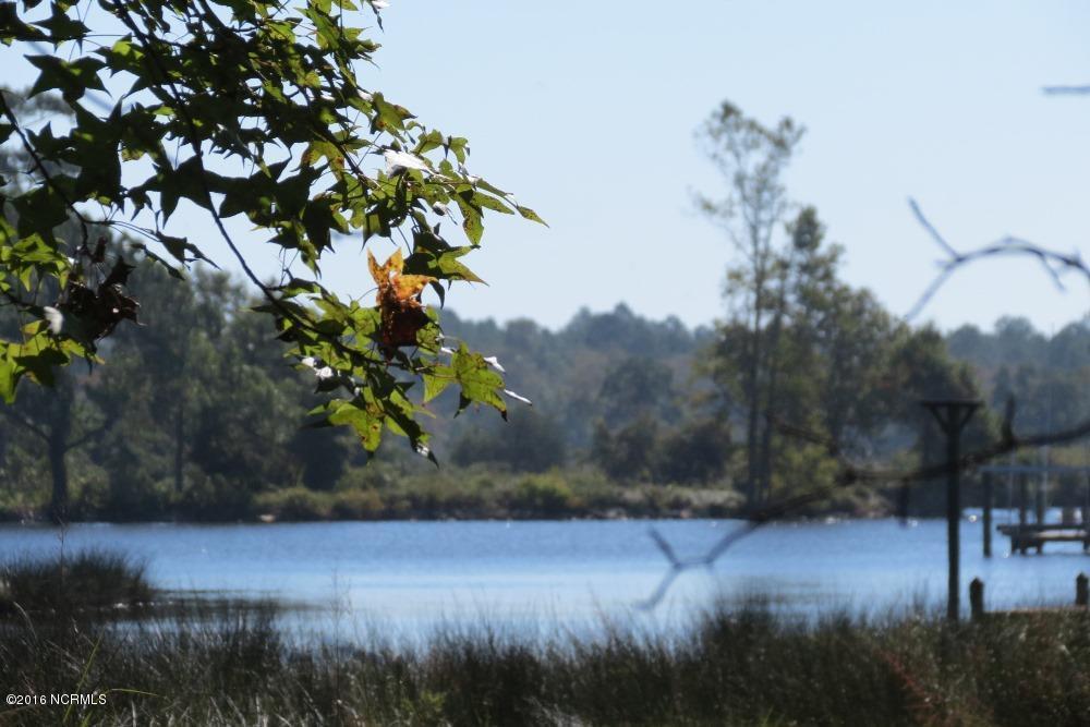 256 Winding Creek Drive, Oriental, NC 28571 (MLS #100032623) :: Century 21 Sweyer & Associates