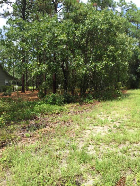 104 Pike Road, Southport, NC 28461 (MLS #100032994) :: Century 21 Sweyer & Associates