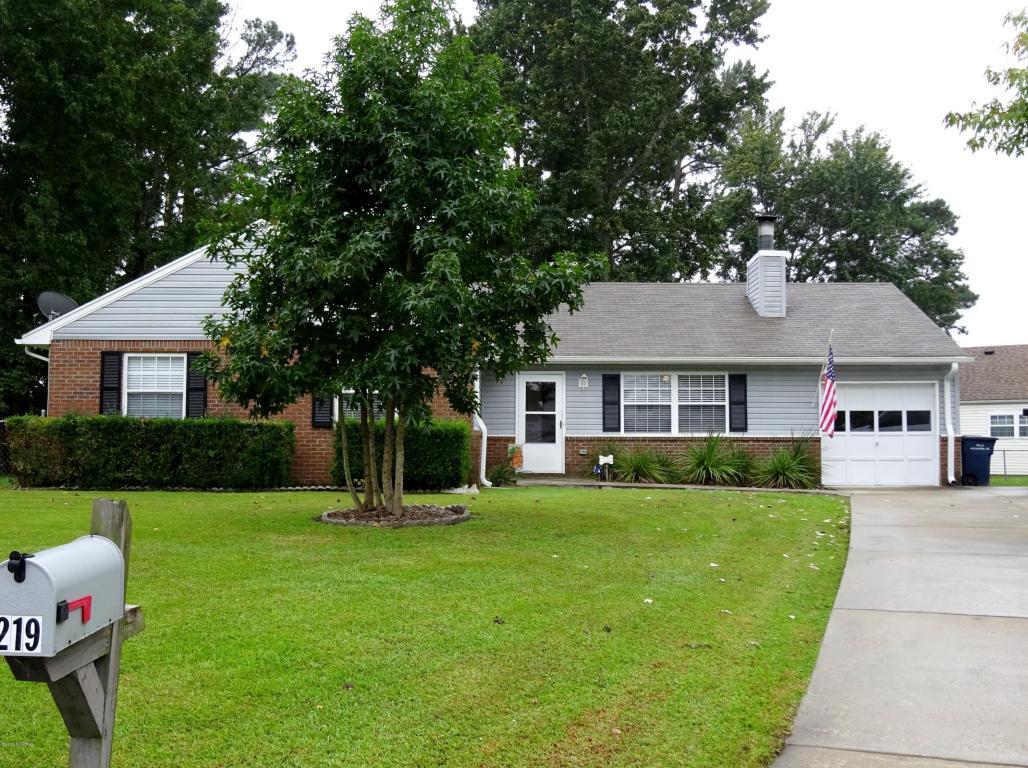 219 Spruce Court, Jacksonville, NC 28546 (MLS #100033016) :: Century 21 Sweyer & Associates