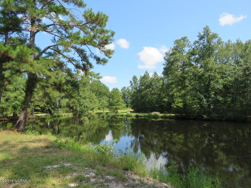 (None) Ash Little River Road - Photo 1
