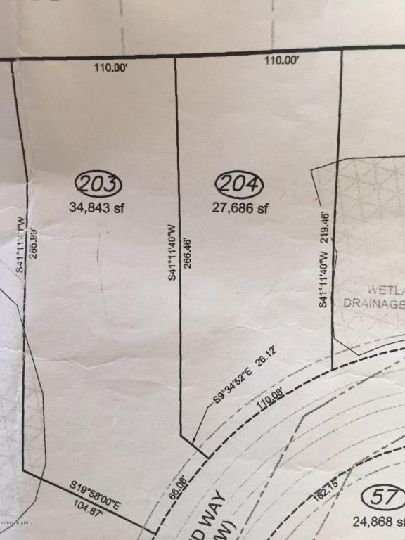 204 Anchors Bend Way, Wilmington, NC 28411 (MLS #100039115) :: David Cummings Real Estate Team