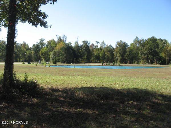 315 Baird Pt Road, Grantsboro, NC 28529 (MLS #100042772) :: Century 21 Sweyer & Associates