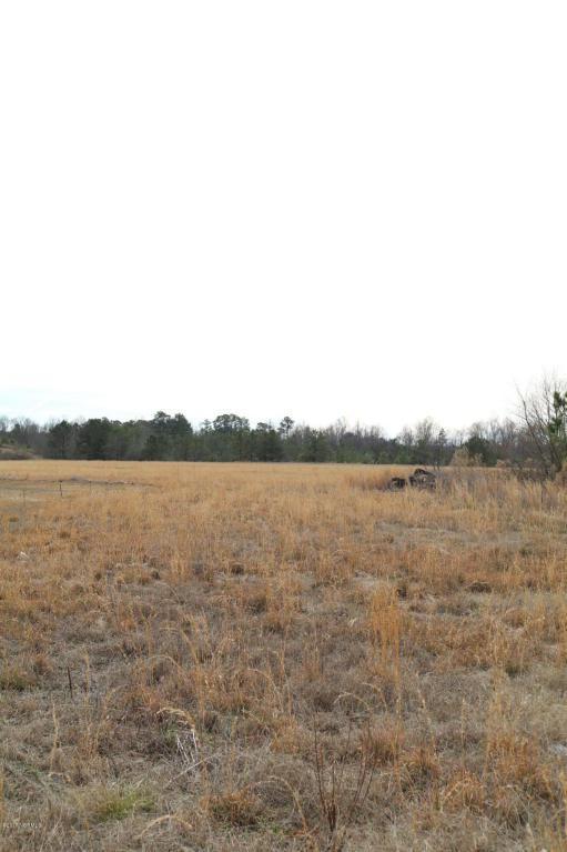 113 Conley Hills Drive, Richlands, NC 28574 (MLS #100043151) :: Century 21 Sweyer & Associates
