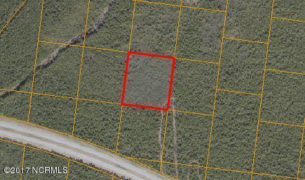 1900 Plantation Road, Wilmington, NC 28411 (MLS #100048718) :: Century 21 Sweyer & Associates