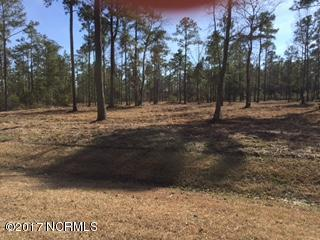 Lot 32 Bailey Pointe Drive, Belhaven, NC 27810 (MLS #100050410) :: Century 21 Sweyer & Associates