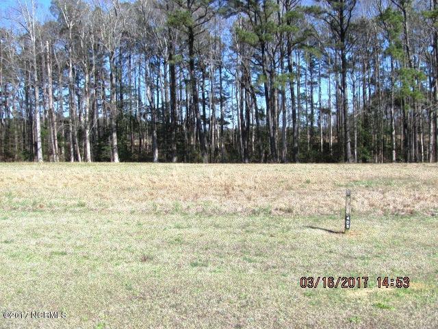 99 S Brightleaf Drive, Arapahoe, NC 28510 (MLS #100056048) :: Century 21 Sweyer & Associates