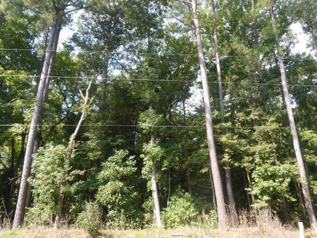 125 Woodland Drive, Havelock, NC 28532 (MLS #100063110) :: Century 21 Sweyer & Associates