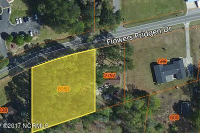 155 Flowers Pridgen Drive, Whiteville, NC 28472 (MLS #100064040) :: Vance Young and Associates