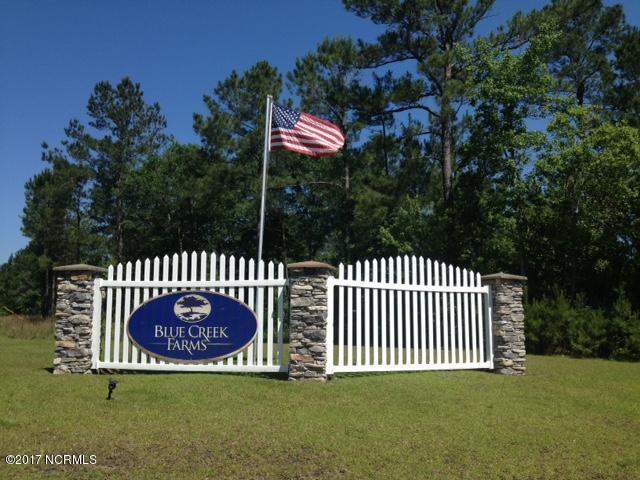615 Weeping Willow Lane, Jacksonville, NC 28540 (MLS #100064900) :: Century 21 Sweyer & Associates