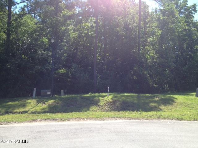 716 Cattail Court, Jacksonville, NC 28540 (MLS #100064902) :: Century 21 Sweyer & Associates