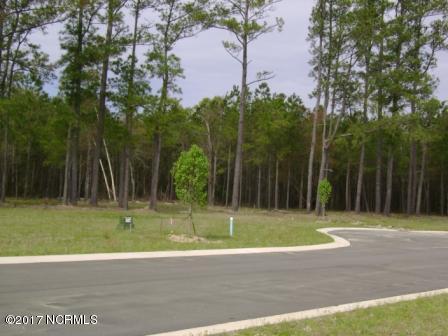 115 Bare Foot Court, Havelock, NC 28532 (MLS #100065026) :: Century 21 Sweyer & Associates