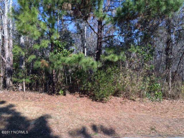 406 Celtic Ash Street, Sneads Ferry, NC 28460 (MLS #100075008) :: The Oceanaire Realty