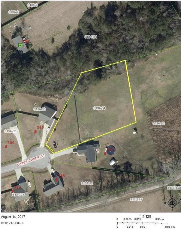 313 Otter Creek Court, Richlands, NC 28574 (MLS #100077399) :: Century 21 Sweyer & Associates