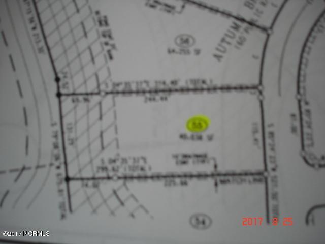 3434 Autumn Breeze Court, Grimesland, NC 27837 (MLS #100079541) :: The Keith Beatty Team