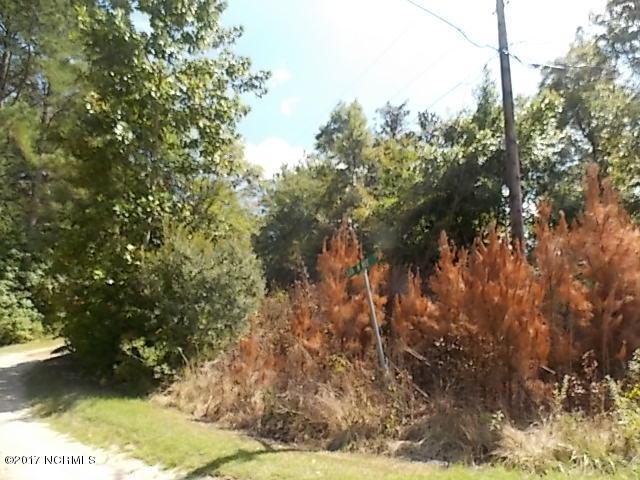 Tbd Blue Top Road, Jacksonville, NC 28540 (MLS #100080162) :: Coldwell Banker Sea Coast Advantage