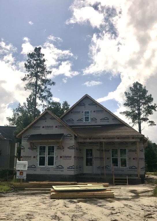 314 Camber Drive, Castle Hayne, NC 28429 (MLS #100081463) :: Century 21 Sweyer & Associates