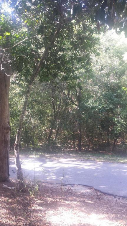 608 Wash Woods Way, Bald Head Island, NC 28461 (MLS #100084594) :: Century 21 Sweyer & Associates