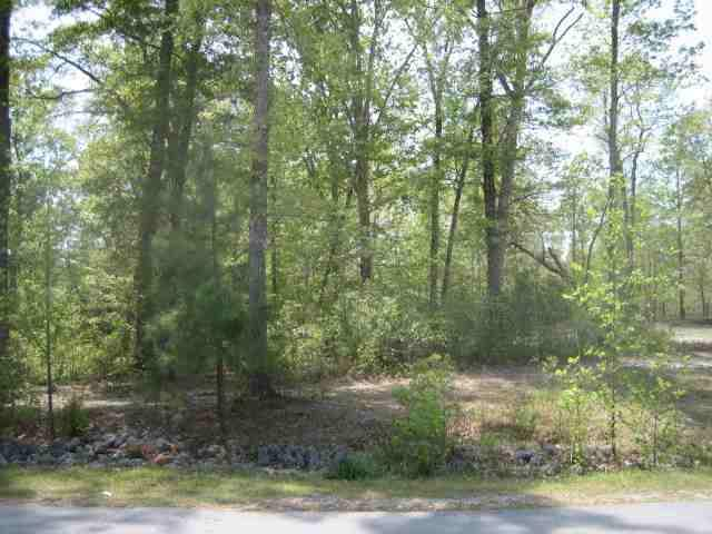 210 Crooked Creek Road, Jacksonville, NC 28540 (MLS #100084963) :: Courtney Carter Homes