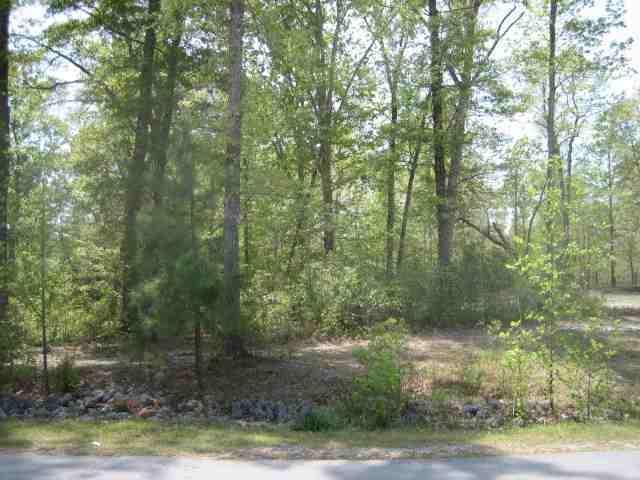 210 Crooked Creek Road, Jacksonville, NC 28540 (MLS #100084963) :: Coldwell Banker Sea Coast Advantage