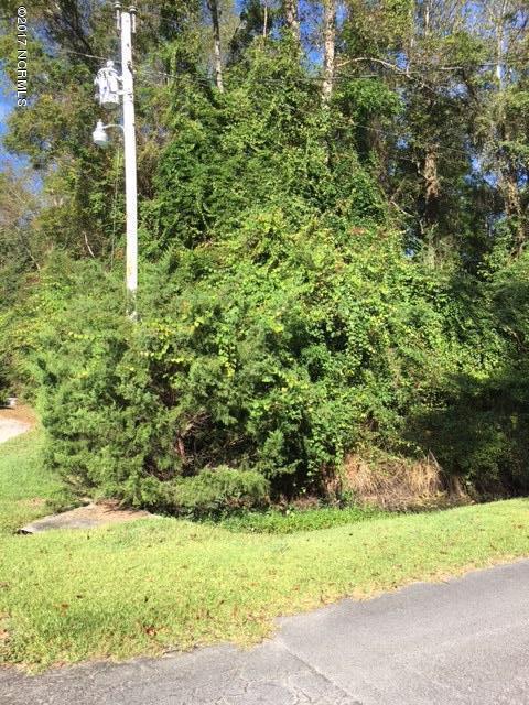 205 Tradewinds Road, Newport, NC 28570 (MLS #100085062) :: Century 21 Sweyer & Associates