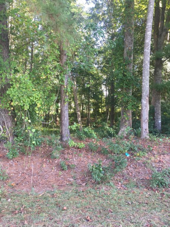 222 Timber Cove Drive, Whiteville, NC 28472 (MLS #100085425) :: Century 21 Sweyer & Associates