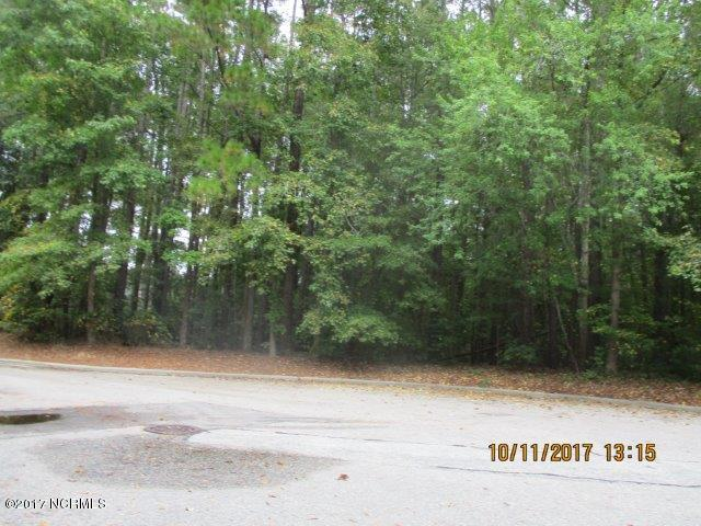 0 Audubon Place NW, Wilson, NC 27896 (MLS #100085714) :: Century 21 Sweyer & Associates